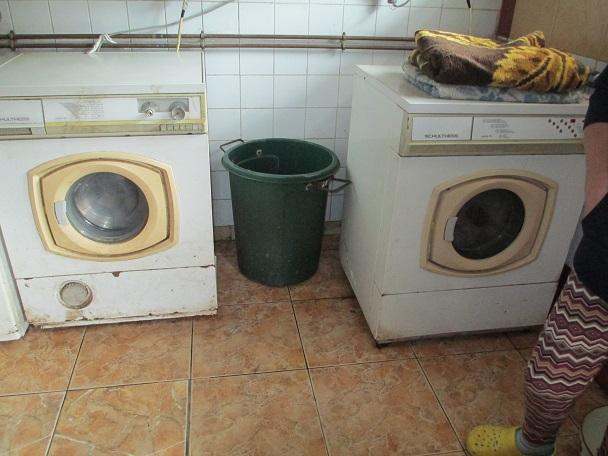 neue waschmaschine kettenlos e v hilfe und vermittlung f r tiere tierschutz. Black Bedroom Furniture Sets. Home Design Ideas